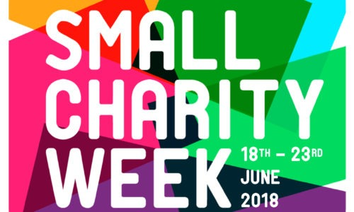 Support us in Small Charity Week